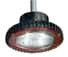 Vaporgard™ - LED Leuchte im Ex-Schutz